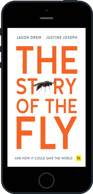 Cover of The Story of the Fly (Ebook - phone) by Jason Drew